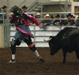 2017 New Years Eve Bull Bash - Xtreme Bull Fighting Competition