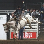 NYE Bulls & Broncs 2016. Photo courtesy of Ponoka News